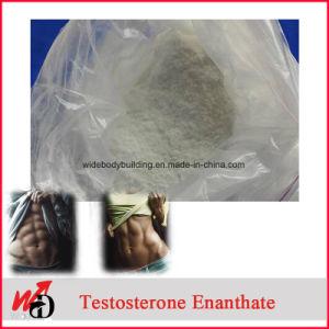 Testosterone Propionate / Testosterone Cypionate / Testosterone Decanoate / Testosterone Enanthate Steroid Hormone pictures & photos