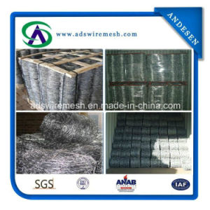 Hot Dipped Stainless Galvanized and PVC Coated Barbed Wire pictures & photos