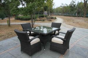 Patio Furniture (FSS-1647)