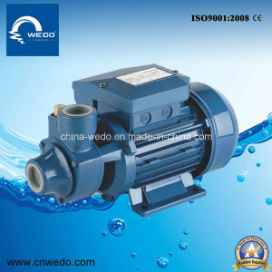 Wedo Idb-55 Series 100% Copper Vortex Water Pump for Clean Water (1HP) pictures & photos