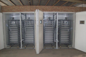 Automatic Largest Chicken Incubator Hatchery Machine for Reptile and Poultry Parrot (RD-19712)