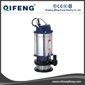 Garden Stainless Steel Motor Shell Clarified Water Pump with Float pictures & photos