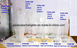 Clear Crystal Glass Vase (FV90-5W-15W) pictures & photos