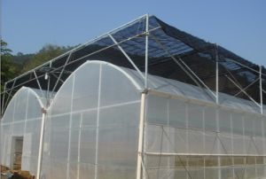 White Anti Insect Net 4m Wide pictures & photos