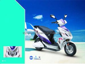 Electric Motorcycle (YHEM-7)
