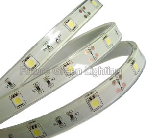 IP68 Waterproof LED Strip with 30PC 5050SMD (FG-LS30S5050SW) pictures & photos