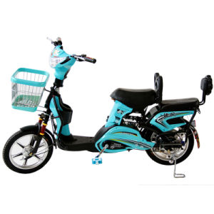 Electric Bike (TDR163-10Z)