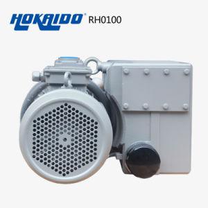 Vacuum Glove Used Oil Rotary Vane Vacuum Pump (RH0100) pictures & photos
