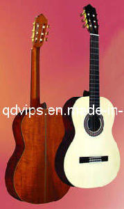 Solid Spruce Top Classical Guitar (CG-490)