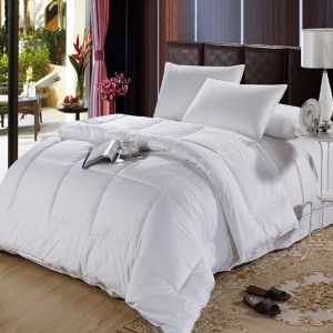 Whole Home Comforter Sets (DPF061043) pictures & photos