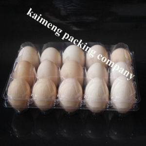 Wholesale Chicken Egg Package Clear PVC Plastic Egg Tray Suppliers UK