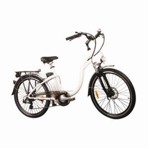 Electric Bicycle (WDL-TDF01Z-NEXUS 3)