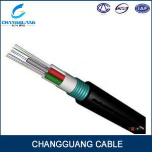 GYTA/S Outdoor 24 Core G652D Armored Fiber Optic Cable