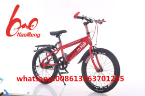 New Colorful Mountain Bicycle/ Bike for Adult pictures & photos