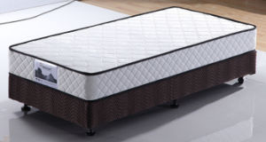 Cheap, Army, Student Spring Mattress pictures & photos