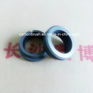 High Quality Carbon Seal Ring Manufacturer from China pictures & photos