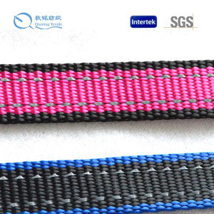 Wholesale Colorful Polyester Webbing for Sale pictures & photos