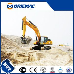 Best Price and Quality Sdlg 21ton LG60210e Wheer Excavator for Sale pictures & photos