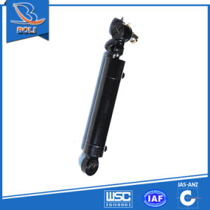 Hydraulic Cylinder for High-Quality Goods Series pictures & photos