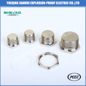 Brass/SS304 Aluminium Hexagon Head Stopping Plug with Lock Nut Ex pictures & photos