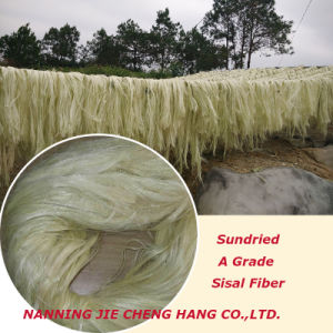 First Grade Natural Color Sisal Fiber for Building Materials