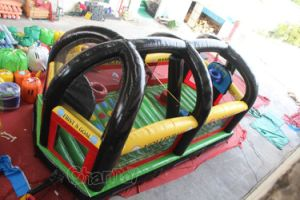 Inflatable Multi Sports Arena Chsp142 pictures & photos