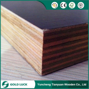 18mm Film Faced Plywood Poplar Core for Qatar Market pictures & photos
