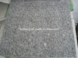 G602 Polished Grey Granite Stone Tiles for Floor Tile pictures & photos