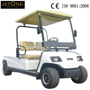 2 Seaters Electric Cargo Car for Community (LT_A2. H2) pictures & photos