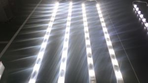 24V 36W Bridgelux LED Rigid Strip pictures & photos