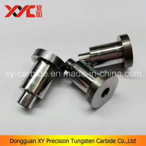 China Tungsten Mould Parts Manufacturer pictures & photos