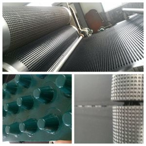 Composite Dimple Geomembrane EVA PE Sheet 0.7mm 8mm Height pictures & photos