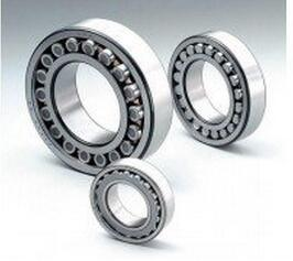 Cylindrical Roller Bearing/SKF/NSK/NTN/NACHI/IKO/ Nu2313m pictures & photos