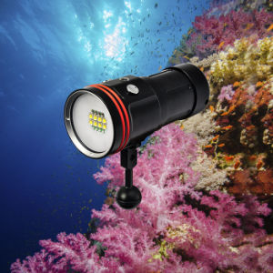 Waterproof 100meters Underwater Photography Torch with Push Button Switch pictures & photos