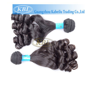 Brazilian Hot Sale Products Fumi Hair pictures & photos