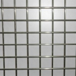 2X2 Galvanized Welded Wire Mesh for Fence Panel pictures & photos