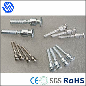 Precision High Quality Stainless Steel Rivet pictures & photos