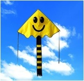 Sky Kite - Smile Face Sk-001 pictures & photos