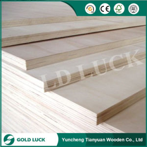 Best Price White Poplar Commercial Plywood pictures & photos