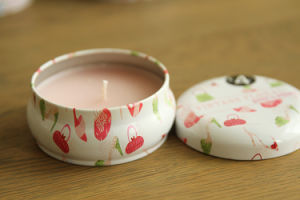 8 Oz Tin Box for Candle to Go pictures & photos