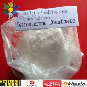 99% Steroids Test Enanthate / Test E CAS 315-37-7 for Muscle Building