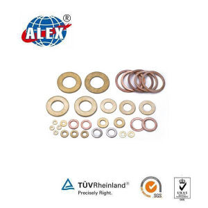 DIN Standard Flat Washer with Free Sample pictures & photos