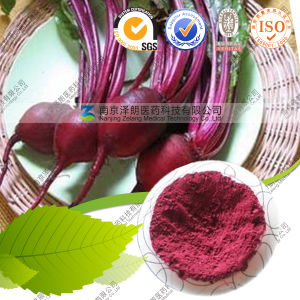 Natural Food Pigments and Health Beetroot Extract pictures & photos
