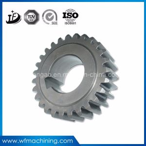 OEM Stainless Steel Spur/Helical Gear Shaft Worm Gear Shaft pictures & photos
