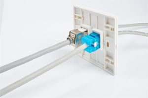 86 Type Dual Port Ethernet Network Cat5e CAT6 Wall Faceplate pictures & photos