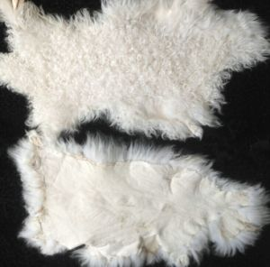 /Natural Lamb Skin Fur Plate pictures & photos