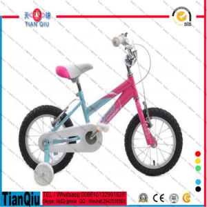 Popular Style in Europe Children Bicycle for Park with Certificate pictures & photos