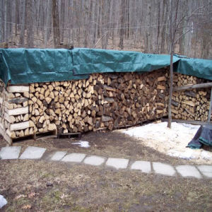 Low Price Firewood PE Tarpaulin Cover pictures & photos