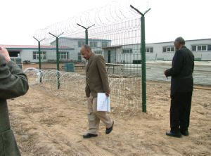 Galvanized Razor Barbed Wire Fencing / Concertina Barbeb Wire Yaqi Fatory Supply pictures & photos
