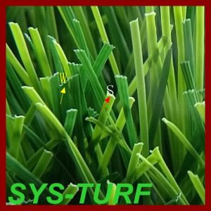 Special Grass Shape Artificial Grass for Sports Filed 60mm Height pictures & photos